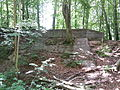 Tysk sikringsanlæg i Marielundsskoven.jpg