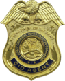 USA - Army CID Badge.png