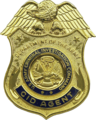 USA - Army CID Badge.png