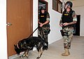 US Navy 090325-N-3666S-073 Master-At-Arms 2nd Class Michael Hartter, left, and Master-At-Arms 2nd Class Jeye Pena search a building with military working dog, Bady.jpg