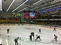 Umeå hockey.jpg
