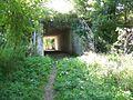 Underpass, Corton - geograph.org.uk - 1479506.jpg