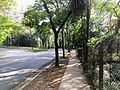 University of Sao Paulo campus 2016 002.jpg