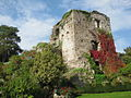 Usk Castle, Monmouthshire 03.JPG