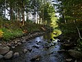 Vieresjoki river 20180829.jpg