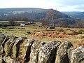 View of Derwent Valley - geograph.org.uk - 1166398.jpg