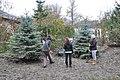 Volunteering (8619053413).jpg