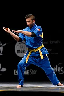 Vovinam demonstration in France in 2014