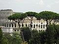 Vue du Colisée depuis le mont Palatin (Rome).jpg