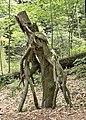Waldmenschen Skulpturenpfad (Freiburg) jm9670.jpg
