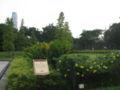 War Memorial Park 7.JPG