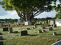 West PB FL Woodlawn cem02.jpg