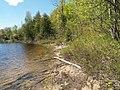 Whitestone Lake (5148770619).jpg