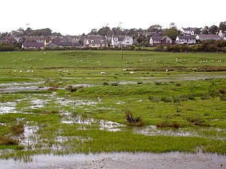 Wigtown Bay - Wigtown Bay Nature Reserve