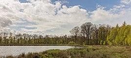 Wijnjeterper Schar, Natura 2000-gebied provincie Friesland 11.jpg