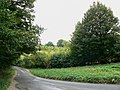 Wilcote Riding, near Finstock - geograph.org.uk - 1514948.jpg