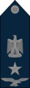 Wing Commander - Egyptian Air Force rank.png