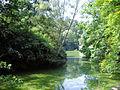 Winkworth Arboretum 1.jpg