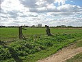 Wisbech and Upwell tramway - remains of crossing gate - geograph.org.uk - 1242052.jpg
