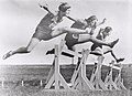 Women's hurdles race taking place at Sydney Sports Ground, New South Wales, March 1931..jpg
