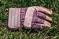 Work glove for right hand LR.jpg
