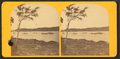 Yachts at Bar Harbor, Mt. Desert, from Robert N. Dennis collection of stereoscopic views.png