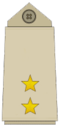 YemeniArmyInsignia-FirstLieutenant.png