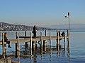Zürichhorn - ZSG Schifflände 2014-02-20 16-34-15 (P7800).JPG