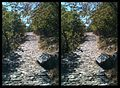 Zagori - Path to Oxia viewing point (3D) - panoramio.jpg