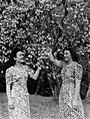 (Portrait of two young women facing each other underneath the branches of a flowering tree) (AM 81480-1).jpg