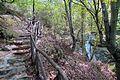 Μεσορόπη - panoramio (5).jpg