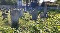 Єврейське кладовище м. Хмельницький 10.jpg