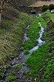 Ботанічний сад Хмельницького національного університету по вулиці Інститутській. Фото 5.jpg