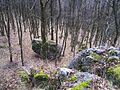 Біля печери відлюдника - panoramio.jpg