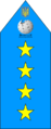 Вікігенерал-полковник.png