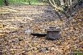 Криниця в Парасоцькому лісі.jpg
