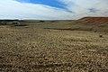 Овраг Мокрый. Вид в западном направлении - panoramio.jpg