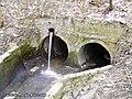 Оріхуватка виходить з-під землі - panoramio.jpg