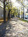 Осень, листопад - panoramio.jpg
