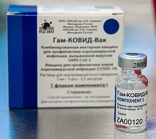 Gam-COVID-Vac Viral vector vaccine based on human adenovirus