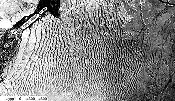 Плановый аэрофотоснимок предыдущего объекта. Шкала линейного масштаба— в метрах. Курайская межгорная котловина, Горный Алтай, правобережье р. Тетё. Гигантская рябь течения ориентирована здесь в направлении, обратном современному падению р. Чуи, на основании чего в Курайской котловине реконструируется гигантский позднечетвертичный круговорот воды с диаметром около 10км.[2]