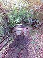 Смоларски водопад 28.jpg