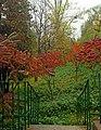 Юннатський дендрологічний парк, Київ 01.jpg