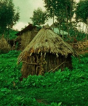 Midras uncleanness - A niddah hut (Mergem Gogo) at the Jewish village of Ambober in northern Ethiopia, 1976. Beta Israeli women left their homes and stayed at the hut during menstruation, until they could immerse at the river and return home.