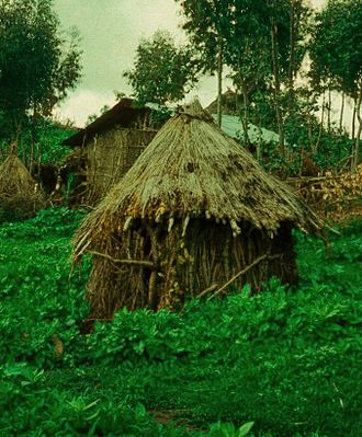 Niddah - A niddah hut (Mergem Gogo) at the Jewish village of Ambober in northern Ethiopia, 1976.