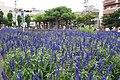 会津若松駅前 - panoramio.jpg
