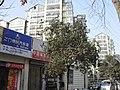 南京大明路 - panoramio (11).jpg
