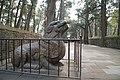 山东 曲阜孔林 - panoramio (2).jpg