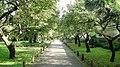 弘道館公園 - panoramio.jpg