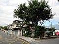 林務局宿舍菁華街33號及33-2號4.jpg